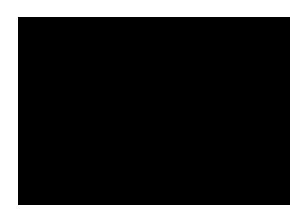 lt-vertical